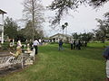 Mary Plantation Guest House From Plantation House back patio.JPG