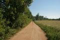 Mechowo - Road 02.jpg