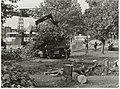 Medewerkers van de sector Natuur en Milieu kappen bomen ter voorbereiding van de bouw van de nieuwe Langebrug over het Spaarne. Links zicht op de oude brug.JPG