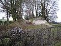 Meon Valley Railway Embankment - geograph.org.uk - 105866.jpg