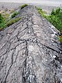 Metagraywackes (Chelmsford Formation, Paleoproterozoic, 1.74 Ga; Larchwood North outcrop, Sudbury Impact Structure, Ontario, Canada) 11 (33884120978).jpg