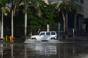 Brickell - A low lying spot in Brickell floods during exceptionally high tides.