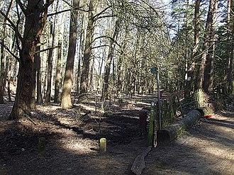 Aspley Guise - Image: Milton Keynes Boundary Walk, Aspley Woods geograph.org.uk 373548