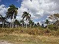Minas, Cuba - panoramio.jpg