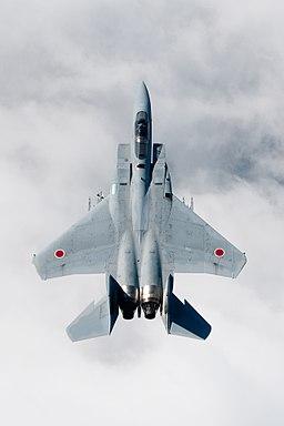 Mitsubishi F-15 (21)
