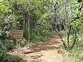 Mme de Stael - Jardim Botânico de Brasília - DSC09788.JPG