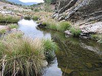 Montes de Toledo (251732835).jpg