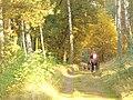 Moorlaker Gestell - geo.hlipp.de - 29864.jpg