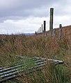 Moorland near Ardtalla, Islay - geograph.org.uk - 274088.jpg