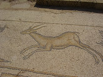 Gazelle - Byzantine-era mosaic of gazelle in Caesarea, Israel