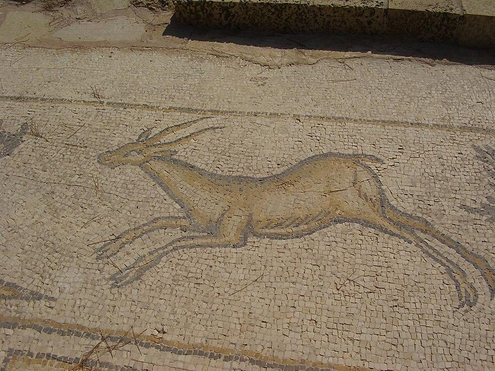 Mosaic of a gazelle Ceasarea israel