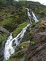 Moss Force, Newlands 1.JPG