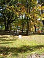 Mount Peace Cemetery and Funeral Directing Company Cemetery 2012-10-20 12-28-57.jpg