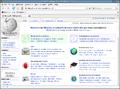 Mozilla-firefox-2.0-fr.png