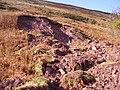 Mud slide - geograph.org.uk - 1016978.jpg