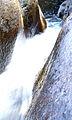 Mulanje Mountain - Kara O'Mula - 080 (3901325924).jpg