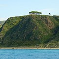NOTE ON CAPO RASOCOLMO NATURIST BEACH - panoramio (2).jpg