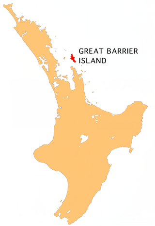 NZ-Gt Barrier I.png