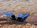 Nadadeiras (1041355780).jpg