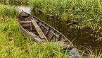 Nationaal Park Weerribben-Wieden. Wandeling over het Laarzenpad door veenmoeras van De Wieden 01.jpg