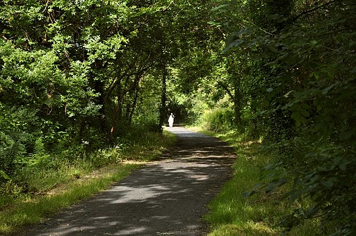 National Cycle Route 27 heading east near the Slade Reservoir - geograph.org.uk - 1967530