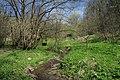 National nature reserve Vyšenské kopce in spring 2012 (27).JPG