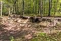 Naturschutzgebiet Königsdorfer Forst-7314.jpg