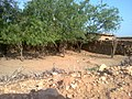 Navidhand End 24 - panoramio.jpg