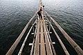 Negotiating The Footbridge of San Vicente Marine Sanctuary.jpg