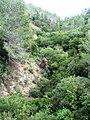 Nesher, Park Nesher, Wadi Katia 078.JPG