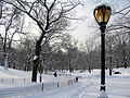 New York. Central Park. Snowy (2797331917).jpg