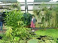 New York Botanical Garden 40.jpg