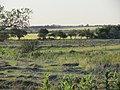 Nogoyá, Entre Ríos, Argentina - panoramio (120).jpg