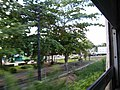 Nong Pling, Mueang Nakhon Sawan District, Nakhon Sawan 60000, Thailand - panoramio (9).jpg
