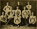 Official rules for ice hockey, speed skating, figure skating and curling (1901) (14804218863).jpg