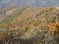 Ojigahata, Taga, Inukami District, Shiga Prefecture 522-0321, Japan - panoramio (3).jpg