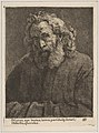 Old Man with a Long Beard MET DP818334.jpg
