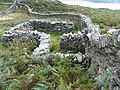 Old Sheep Pens - geograph.org.uk - 128205.jpg