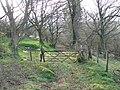 Old woodland - geograph.org.uk - 390072.jpg