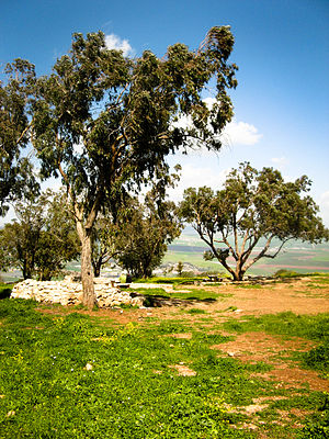 Mount Gilboa - Scenery on Mount Gilboa