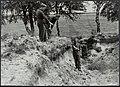 Op 15 augustus 1945 zullen Amerikaanse eskaders kransen uitwerpen bij America (L, Bestanddeelnr 120-0587.jpg
