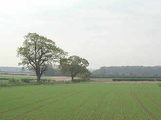 Vale of York - Open farmland in the Vale of York