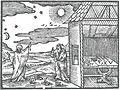 OrbisPictus b 206.jpg