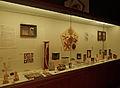 Oursins-Etoiles de mer-Musée zoologique de Strasbourg.jpg