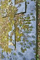 Père-Lachaise - Division 55 - Unknown 18.jpg
