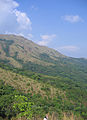 Pakshipathalam - views from the way to Pakshipathalam from Thirunelli (210).jpg