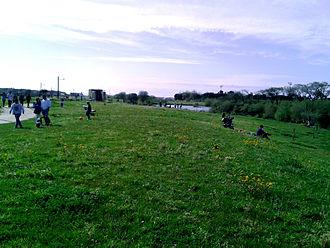 Póvoa de Varzim City Park - The great lawn area.