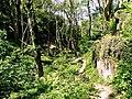 Pełen zieleni Blaskinsdal - panoramio.jpg