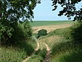 Peddars Way, Norfolk. - geograph.org.uk - 158451.jpg
