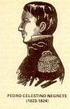 Pedro Celestino Negrete.jpg